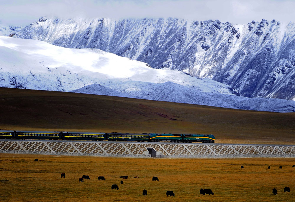 Qingzang_railway_Train-1.jpg